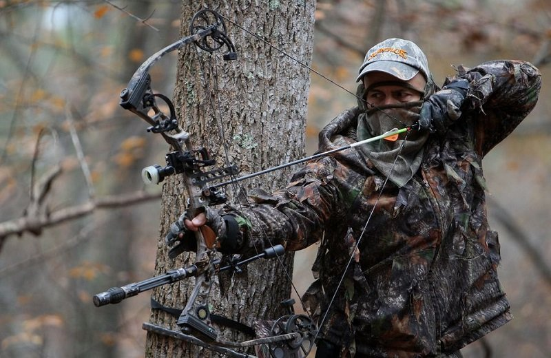 Best Hunting Crossbow Reviews