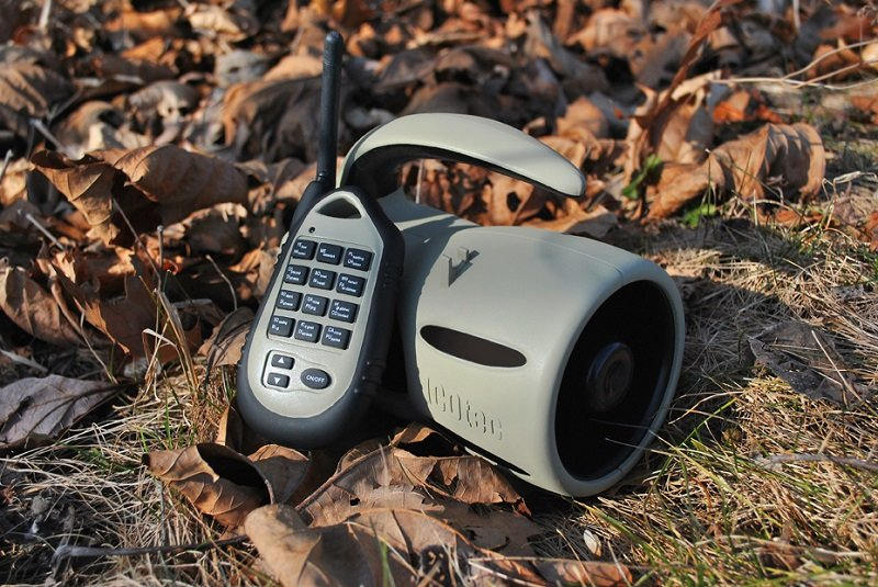 Best Electronic Predator call Reviews